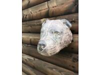 Staffordshire bull terrier head garden fence wall plaque
