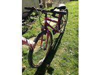 Old bike. Full working order. 10-14 years.