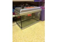 2ft fish tank with light in lid