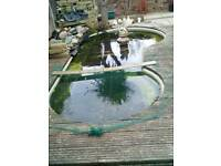 Fish pond fibreglass