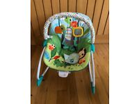 Bright Starts Playful Parade Baby to Big Kid Bouncer