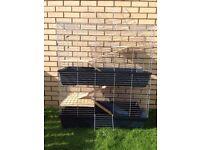 **Guinea Pig Cage**