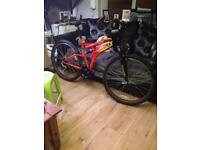 """Big 26"""" bike"""