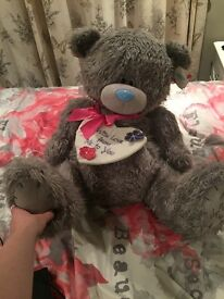 Gigantic tatty teddy