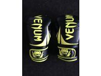 Venum Boxing Gloves 16oz