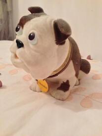 Churchill nodding dog