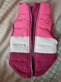 Puppy or Dog Coat (New!)