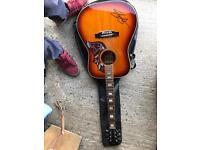 Hummingbird Slash signed Guitar