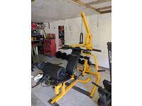 Full olympic gym set up!!
