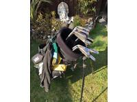 Full set of irons with golf bag and balls