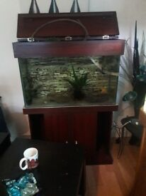 120 litre fish tank with filter and heater