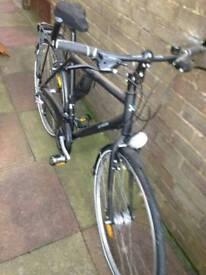 Adults bike like new