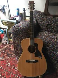 Pure Tone Acoustic Guitar 90£ ONO