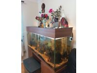 6 feet tank for sale