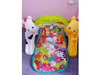 Fisher price newborn to toddler play mat
