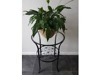 Side, occasional table