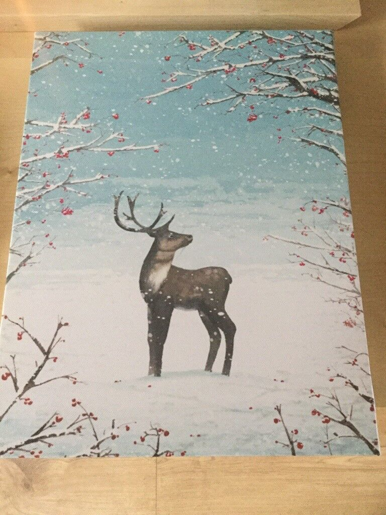 John Lewis Festive / Christmas LED Canvas | in Dunblane, Stirling ...