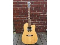 Indie Tree of Life DCE Electro Acoustic Guitar
