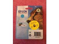 Epson Ink Cartridges T0711 and T0712