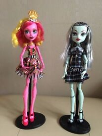 Monster high dolls. LARGE