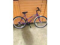Ladies new mountain bike