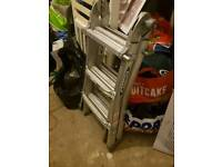 Werner telescopic ladder