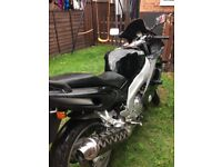 Black yamaha thundercat in grest condition and excellent runner.