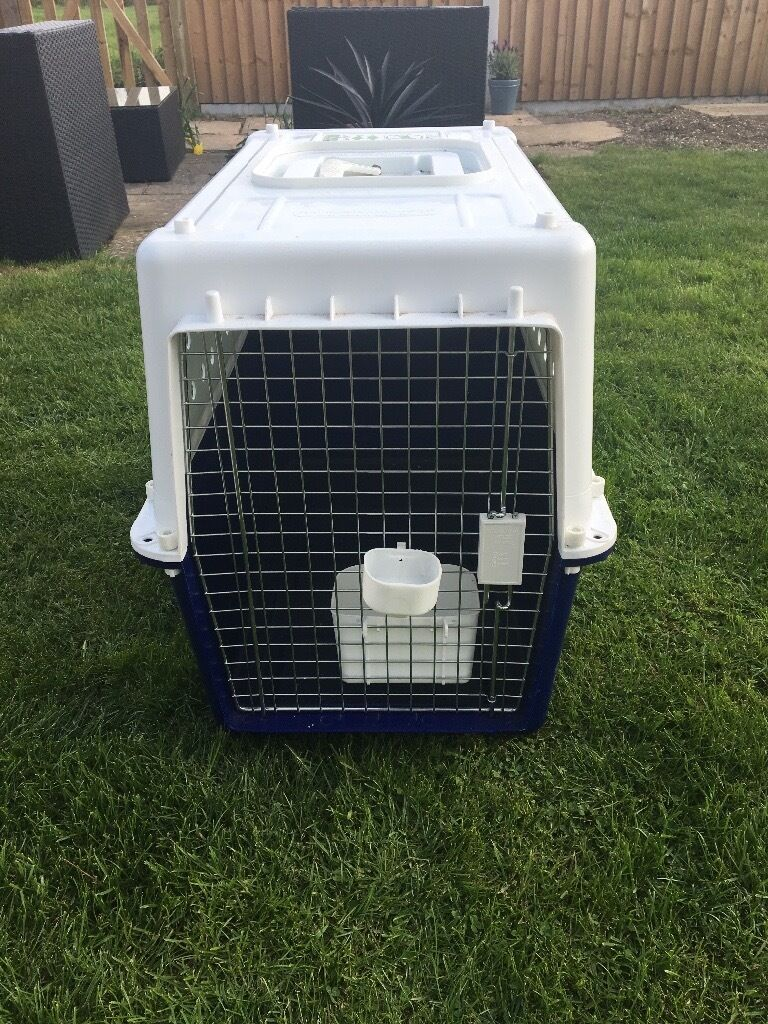 Dog Animal Cargo Carrier Crate Airline Approved In Chelmsford