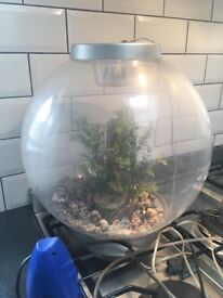 30L biorb fish tank