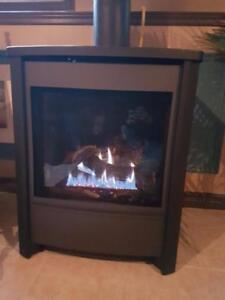 Freestanding gas fireplace SALE!