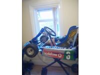 F1 racing go kart 80 cc very fast