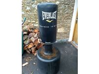 Everlast Kick boxing bag. In daily use but has been kept outside and shows wear/rust on bolts.