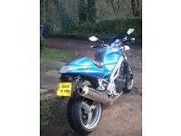 speedtriple 955i 2001 excellent standard condition