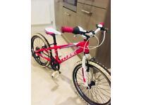 Cube 200 R bike