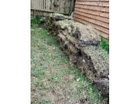 FREE grass lawn turf/ soil