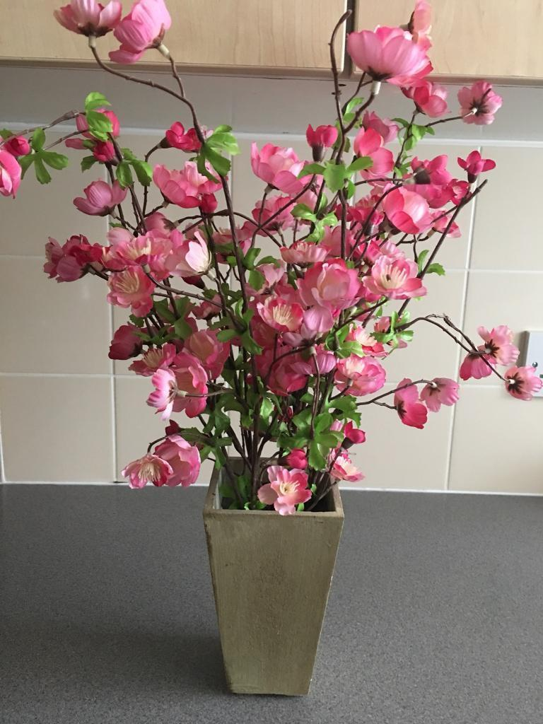 Beautiful Flower Pot With Hot Pink Flowers In Leicester