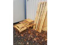 FREE various sized pallets