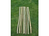 Walking Stick Shanks (unseasoned blanks) Ash and Hazel aprox 55 inches long. 3 for £10