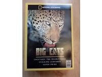 Big Cats DVDs - Boxed and unused - Chatham - £1 only!