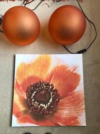 Orange flower canvas An 2 ball lamps