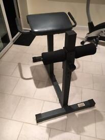 Impex gym back stretching and strengthening machine. Adjustable height