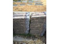 Reclaimed double roman roof tiles