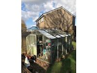 Greenhouse 10' x 8' includes glass + fittings old but still functions. Extra glass included £50