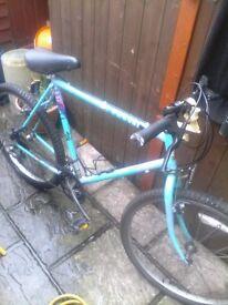 26in bike mans bike