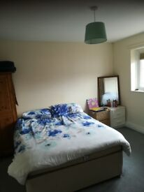 Large Double Room to rent £98pw