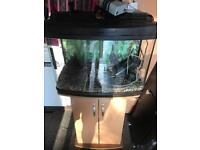 2 ft fish tank and cabinet