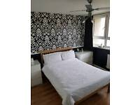 Lovely large Double Room to rent