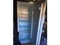 tall logik fridge