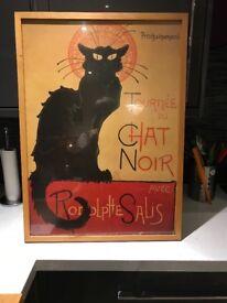 Chat Noir Picture