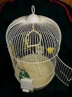 Cage pour perruches